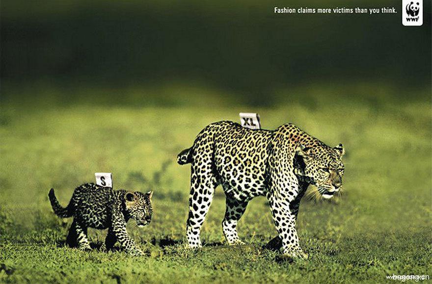 動物廣告321.jpg