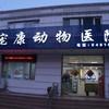 北京宠康动物医院