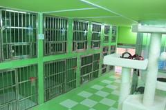 跃意缘动物医院(通州)环境8