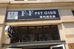 FF宠物俱乐部0
