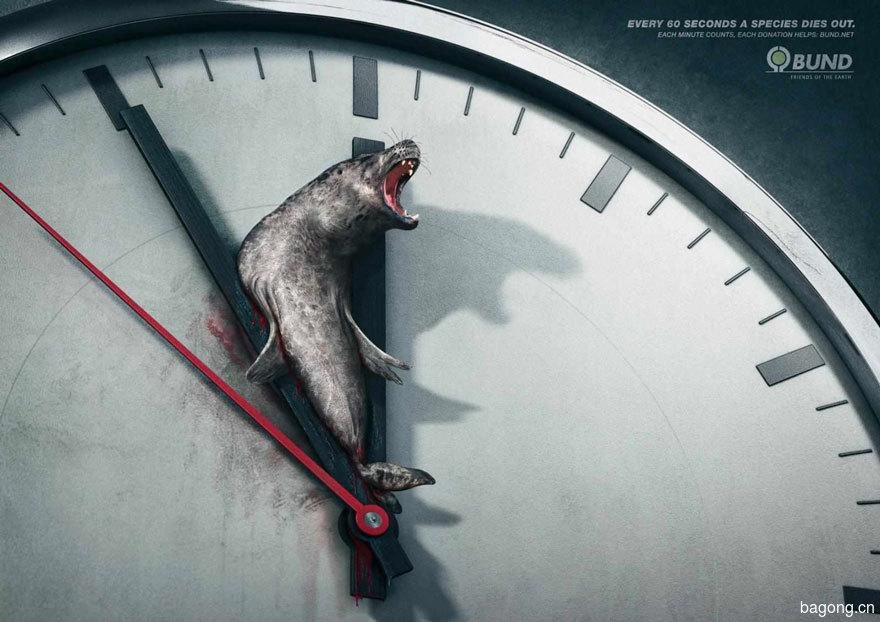 33个动物公益广告震撼人心2
