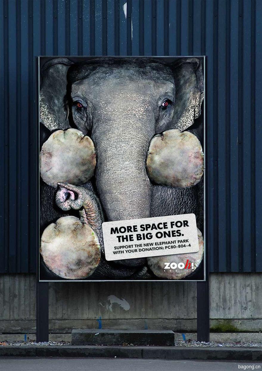 33个动物公益广告震撼人心13