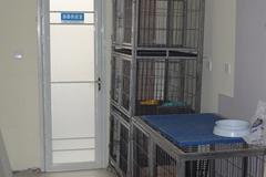 北京诺亚动物医院环境3