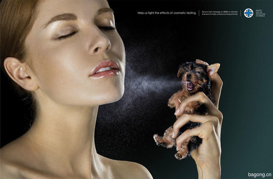 33个动物公益广告震撼人心10