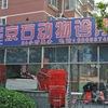 北京京石动物诊所