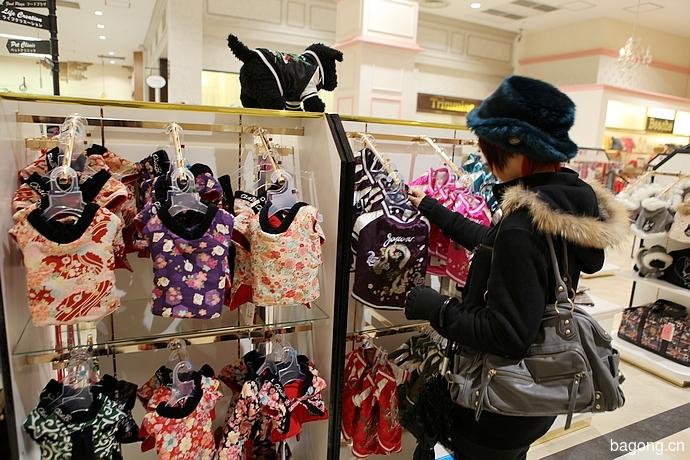 跨国看门道,推敲日本宠物店的经营模式20