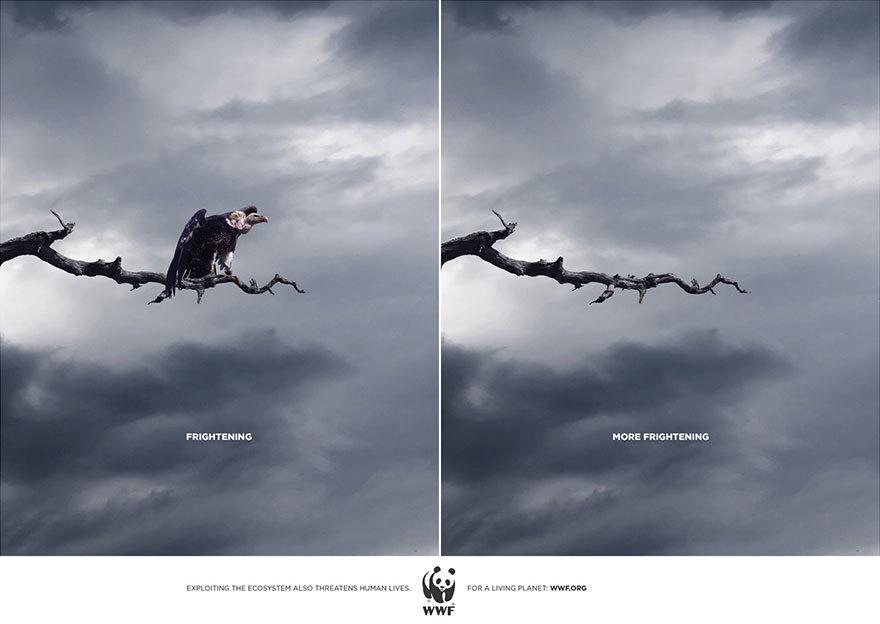 33个动物公益广告震撼人心7