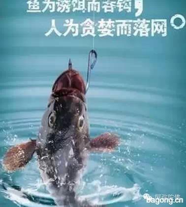 【震撼】为什么经常钓鱼的人都不长寿2