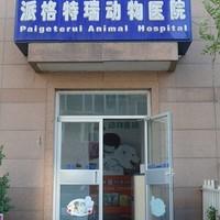 北京派格特瑞动物医院 封面小图