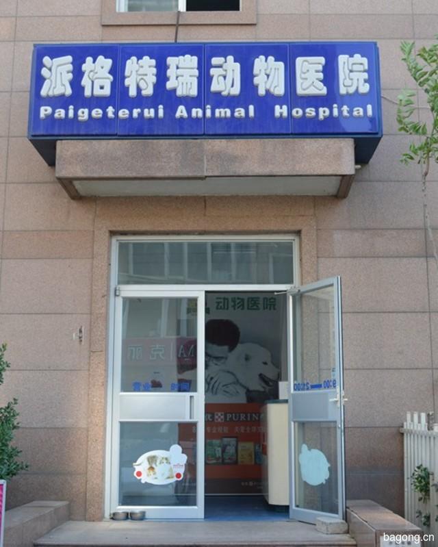 北京派格特瑞动物医院 封面大图