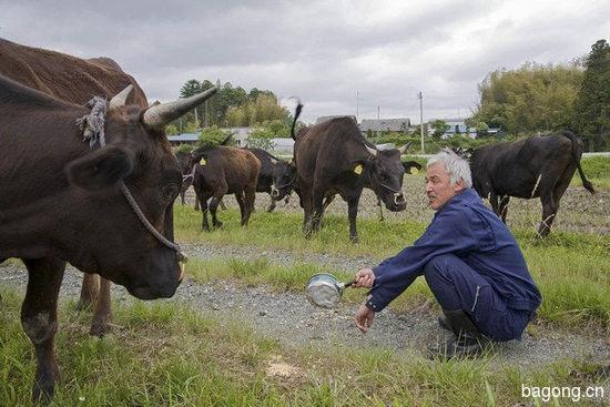 男子为照顾动物留守核辐射区,超有爱!3