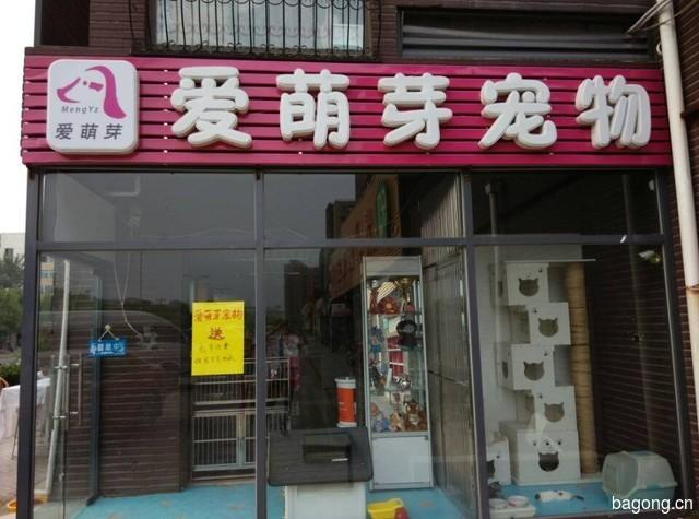 爱萌芽宠物(霍营店) 封面大图