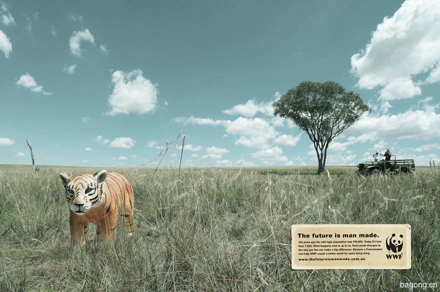 33个动物公益广告震撼人心46