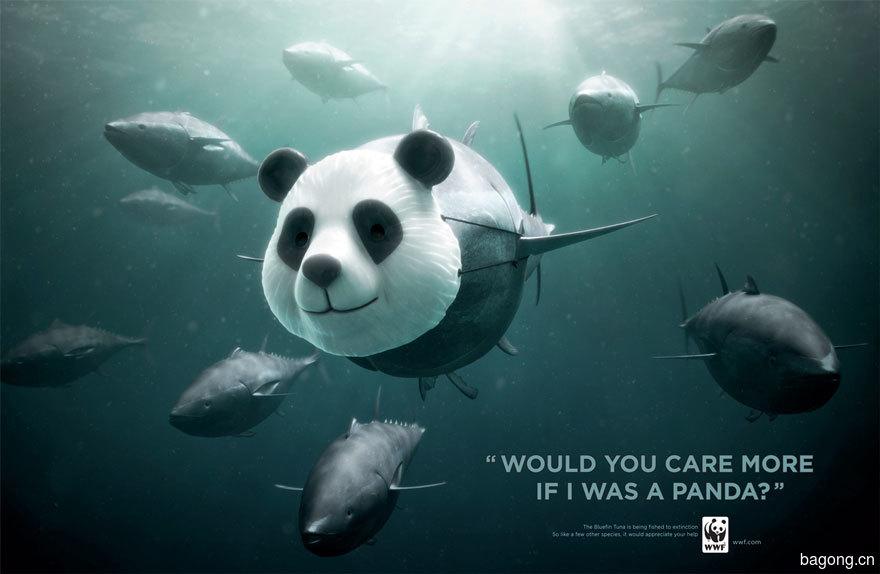動物廣告331.jpg