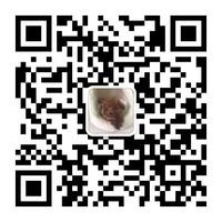 派多格宠物(昌盛园店)微信二维码
