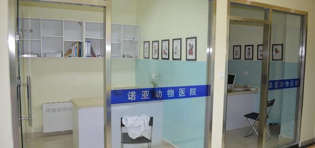 北京诺亚动物医院2