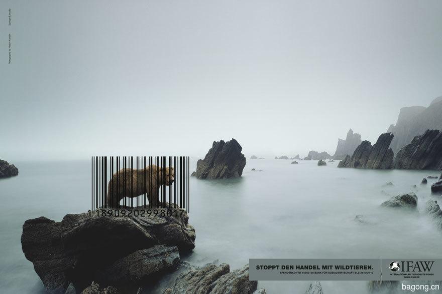 動物廣告141.jpg