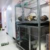 亚博动物医院