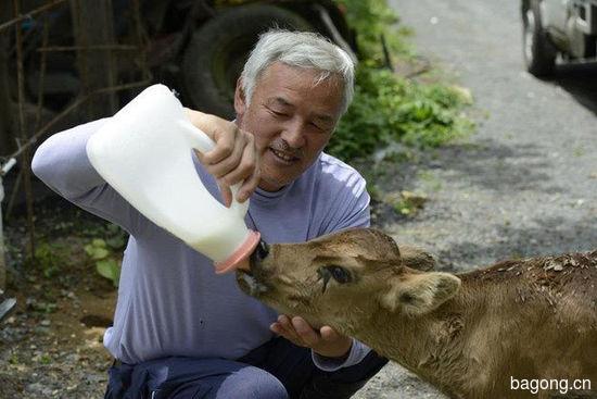 男子为照顾动物留守核辐射区,超有爱!5