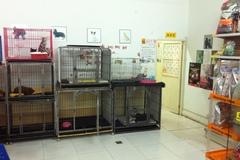 宠艺宠物生活馆3