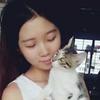 广州猫领养