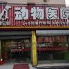 北京靓宝贝动物医院