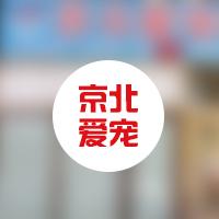 北京京北爱宠动物诊所 封面小图