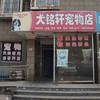犬铭轩宠物店