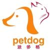 派多格宠物连锁机构(国美第一城店)