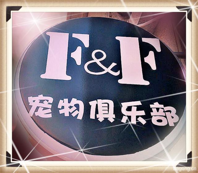 FF宠物俱乐部 封面大图