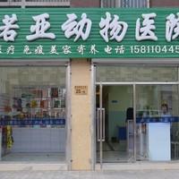 北京诺亚动物医院 封面小图