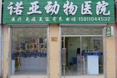 北京诺亚动物医院环境0