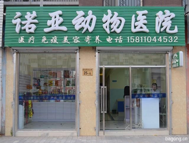 北京诺亚动物医院 封面大图