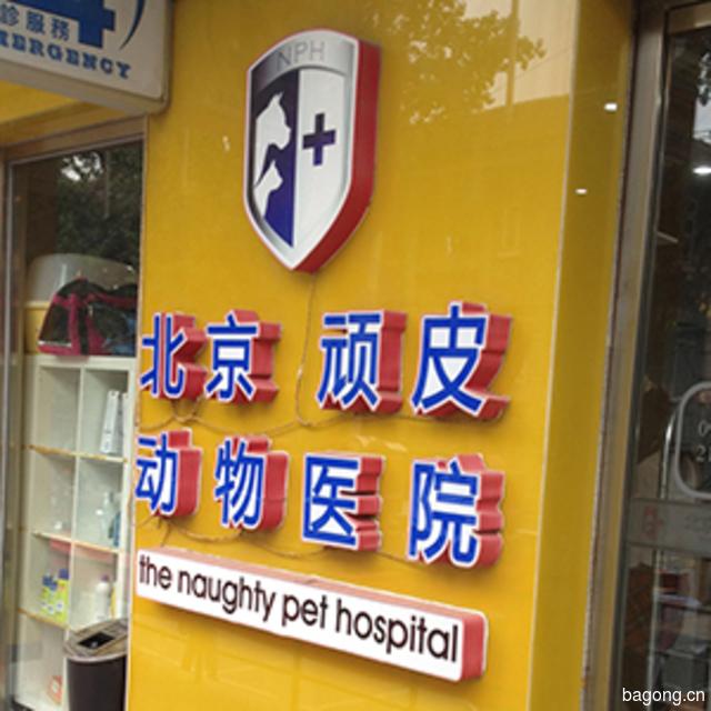 北京顽皮动物医院 封面大图
