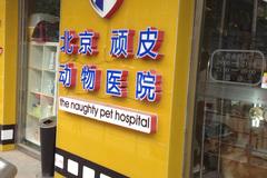 北京顽皮动物医院环境0