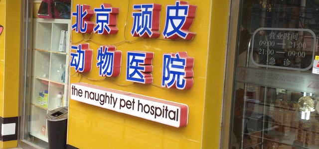 北京顽皮动物医院0