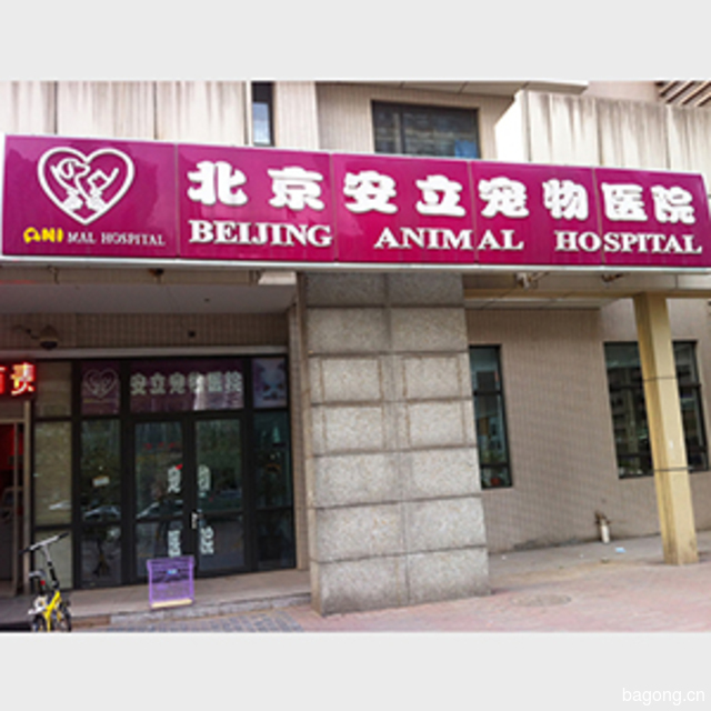 北京安立宠物医院 封面大图