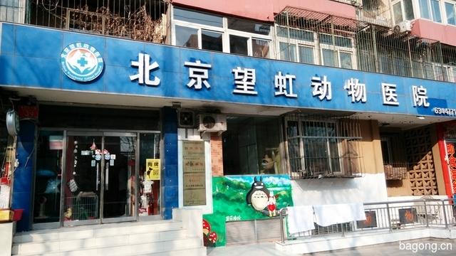 北京望虹动物医院(莲花店) 封面大图