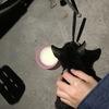 黑猫警长求收养