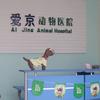 北京爱京动物医院
