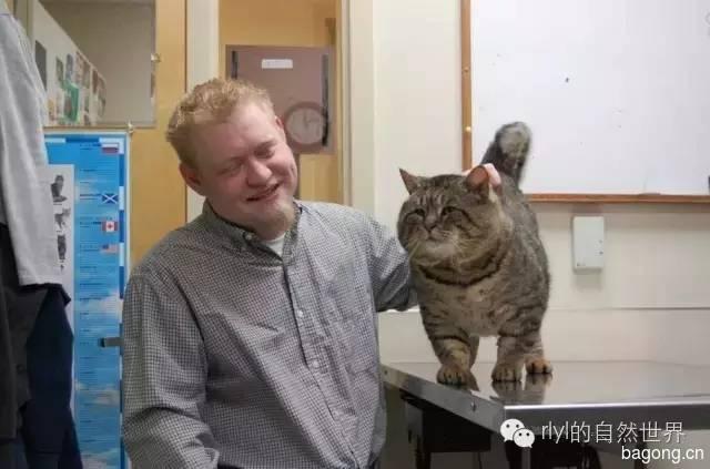 傻肥猫流浪记   变胖原来是吃了半年的狗粮!10