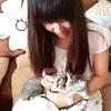 爱猫咪20元起家庭寄养宠物寄养