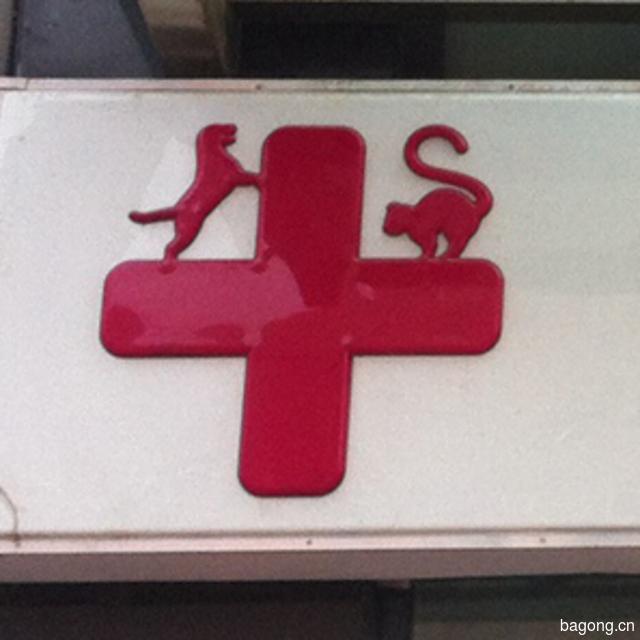 猫腾狗跃动物医院 封面大图