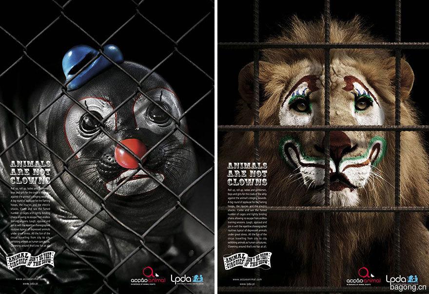 動物廣告22.jpg