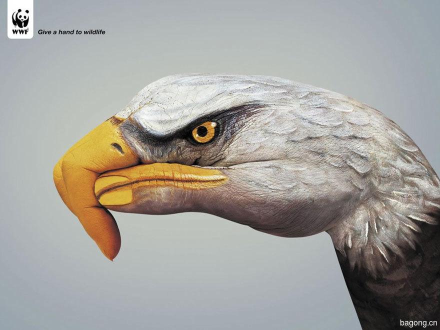 33个动物公益广告震撼人心41